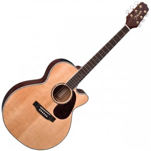 Austicna gitara
