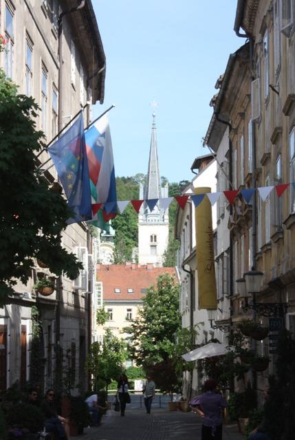 Križevniška ulica je kratka, uska uličica u strogom centru grada, i može se slobodno reći da je to najlepša ulica u Ljubljani. U ulici se nalazi Mini Teatar (pozorište za decu), čiji je vlasnik zaslužan za oživljavanje ove ulice. Svaki kutak predstavlja specifičnost za sebe, bilo da je u pitanju concept radnja, berbernica, galerija ili restoran. Križevniška je prepuna biljaka u ogromnim saksijama, među kojima ima i voćki i povrćki. Duž cele ulice postavljene su klupe na kojima su ispisani stihovi poznatih slovenačkih pesnika. Ulica vodi direktno na Križanke, kompleks nekadašnjeg samostana, danas prostor prilagođen za različite namene.