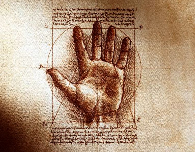 Leonardo_proporcija_ruke