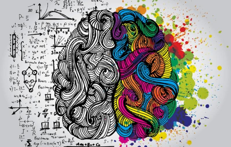 Mozak_naslovna