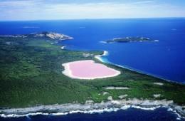 roze_jezero_australija