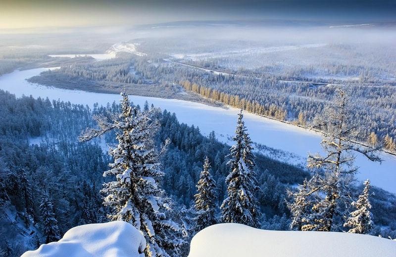 sibirska_tundra