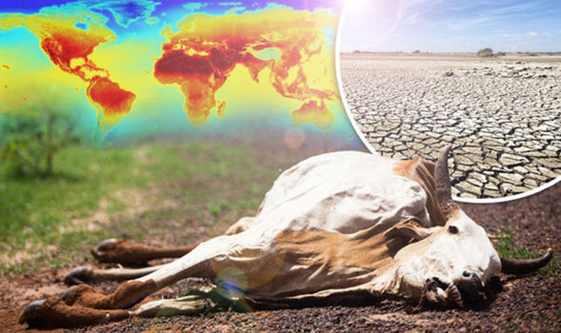 globalno_zagrevanje
