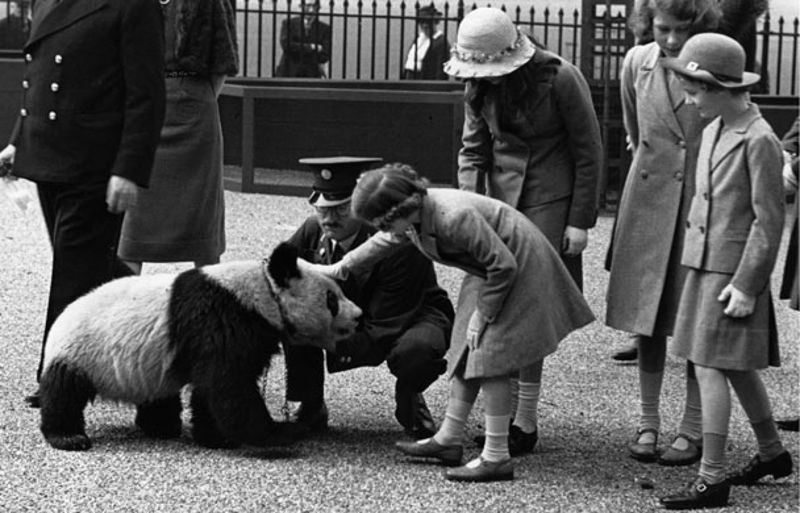 londonski_zoo