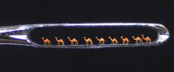 kamila kroz iglene uši