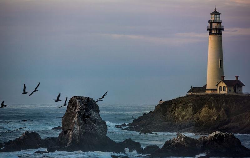 Pigeon_Point_kalifornija