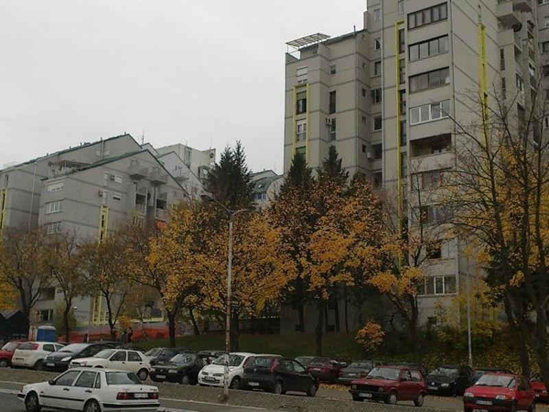 labudovo_brdo