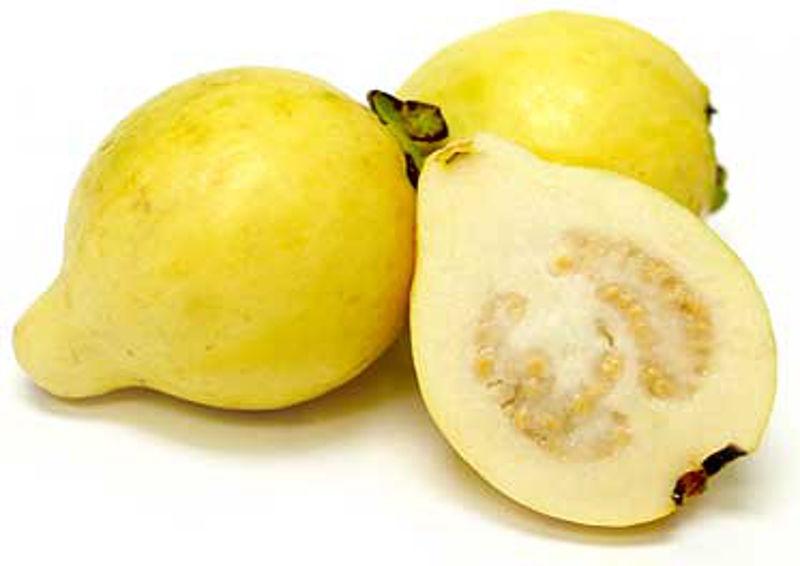 meksicka_guava