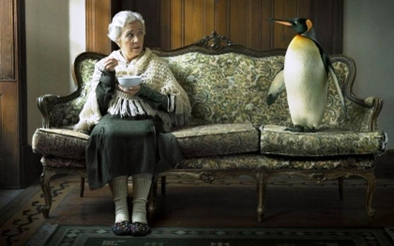 pingvin_kucni_ljubimac