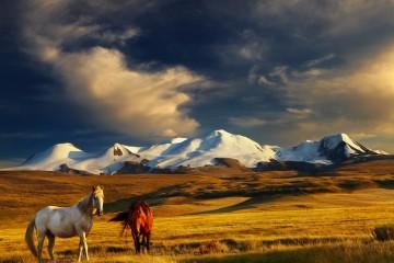 mongolia_naslovna