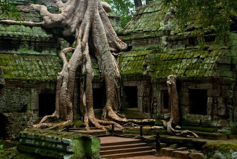 Foto: totallychaos.com