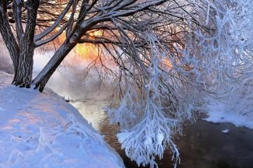 zima_naslovna