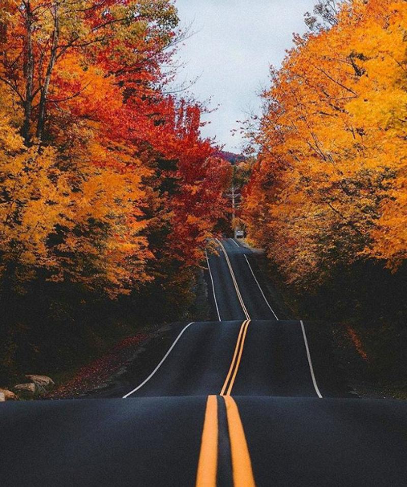 Foto: walldevil.com