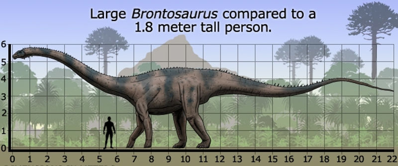 Foto: prehistoric-wildlife.com