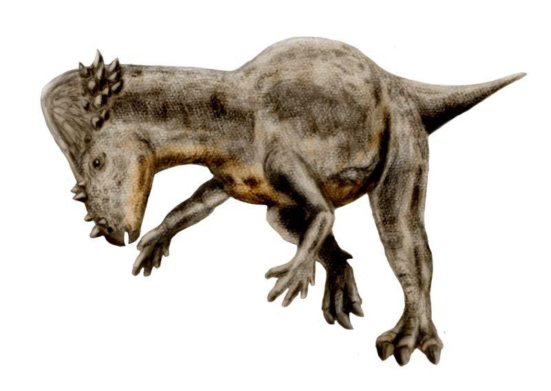 Foto: dinosaurusi.com