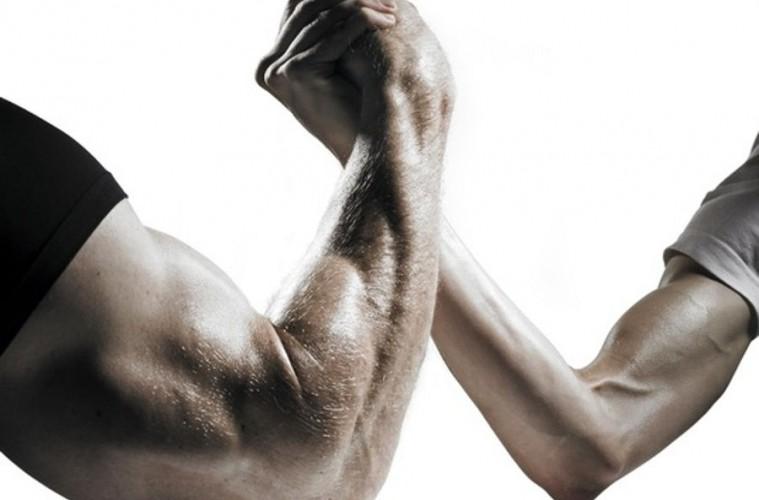 biceps_naslovna