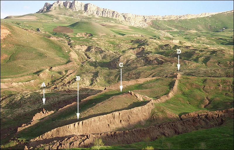 Foto: sunnyskyz.com