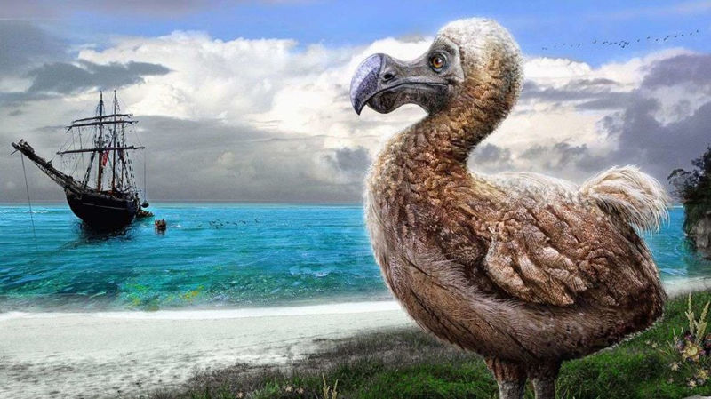 Foto: animals.howstuffworks.com