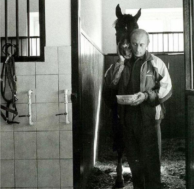 vladimir_putin_i_konj