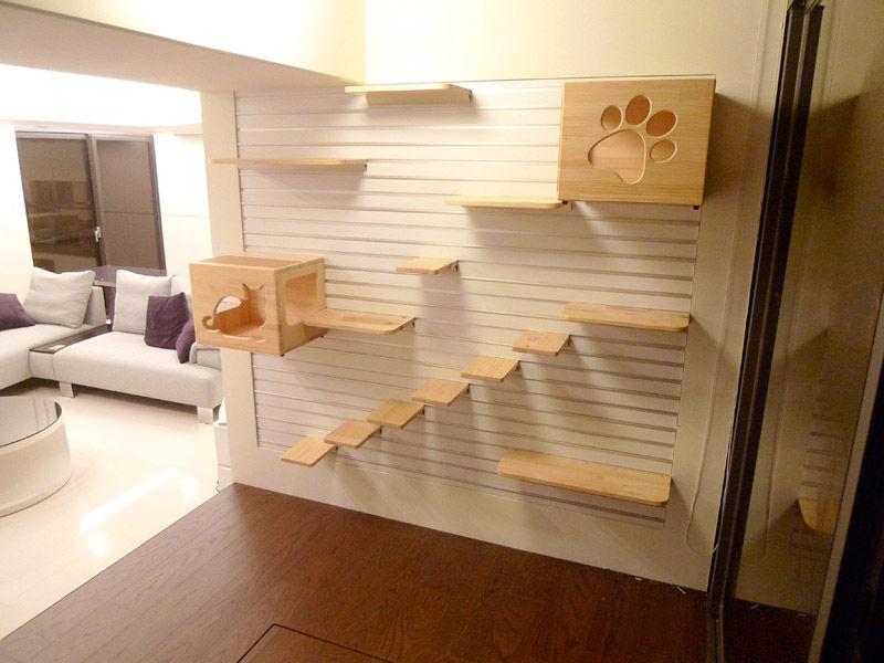 Foto: catberrytails.com