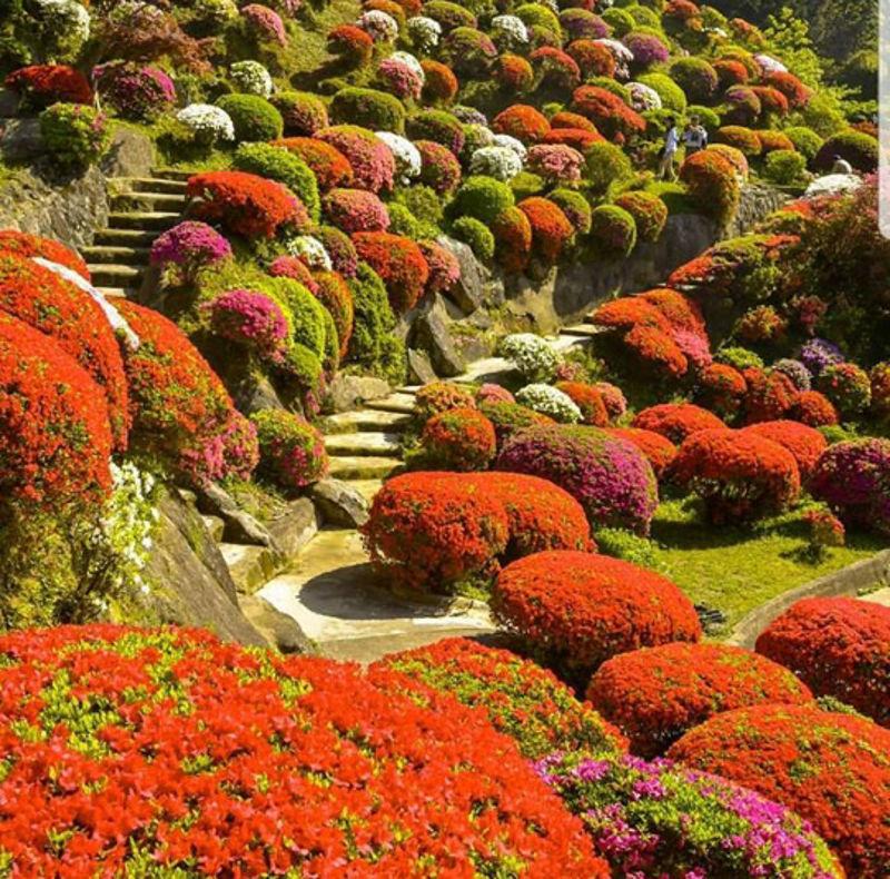Foto: picwallz.com