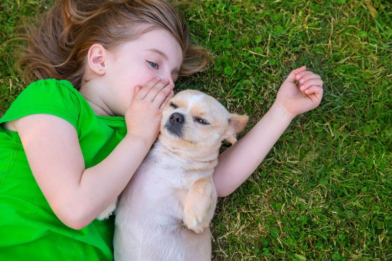 Foto: dogster.com
