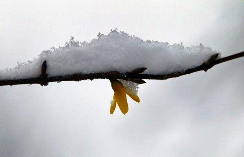 Foto: fotolia.com