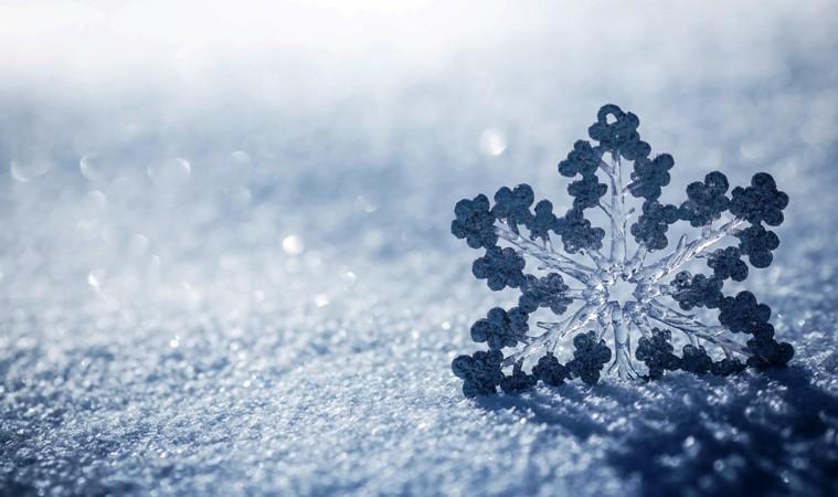 Snežna_pahulja