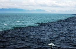 okeani_naslovna