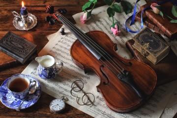 violina_naslovna