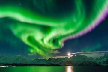 aurora_naslovna