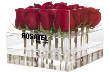 ruže_poklon