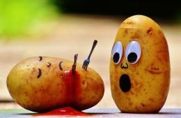 krompir_naslovna
